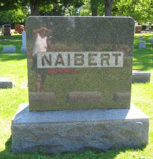NAIBERT, FAMILY STONE - Linn County, Iowa | FAMILY STONE NAIBERT