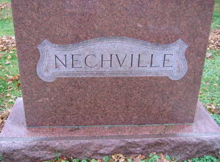 NECHVILLE, FAMILY STONE - Linn County, Iowa | FAMILY STONE NECHVILLE