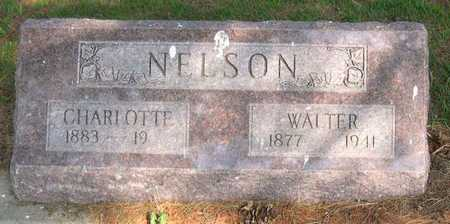 NELSON, WALTER - Linn County, Iowa | WALTER NELSON