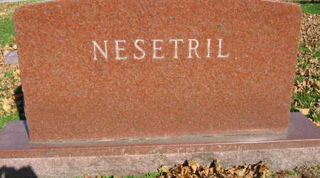 NESETRIL, FAMILY STONE - Linn County, Iowa | FAMILY STONE NESETRIL