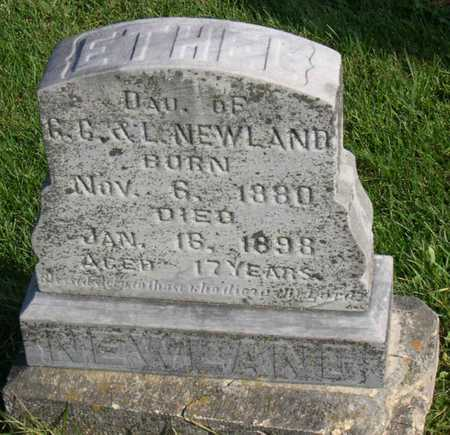 NEWLAND, ETHEL - Linn County, Iowa | ETHEL NEWLAND