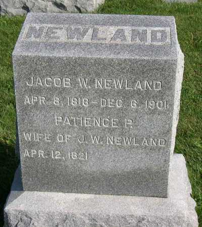 NEWLAND, JACOB W. - Linn County, Iowa | JACOB W. NEWLAND