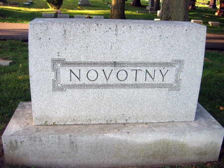 NOVOTNY, FAMILY STONE   (KOPECNY NOVOTNY) - Linn County, Iowa | FAMILY STONE   (KOPECNY NOVOTNY) NOVOTNY
