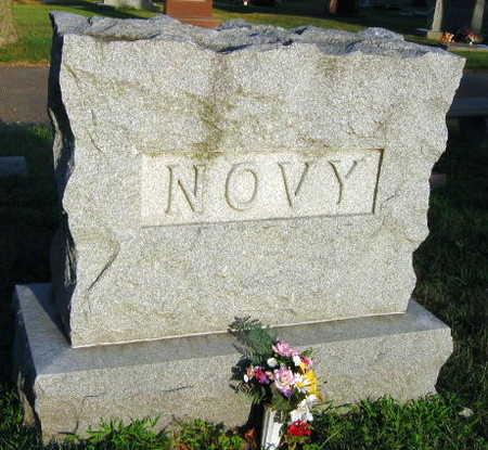 NOVY, FAMILY STONE - Linn County, Iowa | FAMILY STONE NOVY