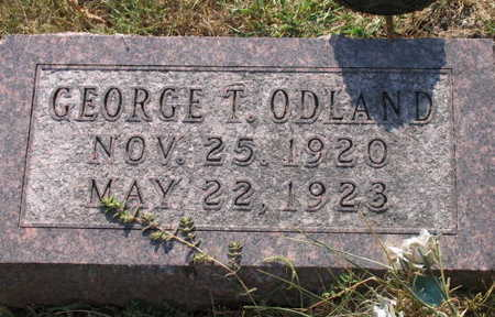 ODLAND, GEORGE T. - Linn County, Iowa | GEORGE T. ODLAND