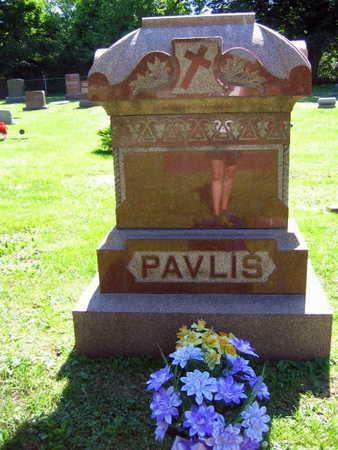 PAVLIS, FAMILY STONE   (PAVIS DLOUHY) - Linn County, Iowa | FAMILY STONE   (PAVIS DLOUHY) PAVLIS