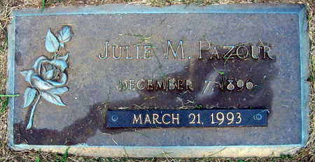 PAZOUR, JULIE M. - Linn County, Iowa | JULIE M. PAZOUR