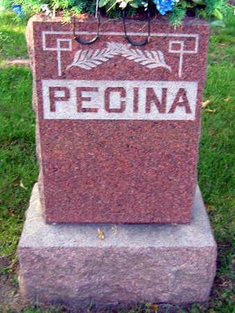 PECINA, FAMILY STONE - Linn County, Iowa | FAMILY STONE PECINA
