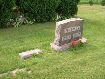 PETERSON, FAMILY PLOT - Linn County, Iowa | FAMILY PLOT PETERSON