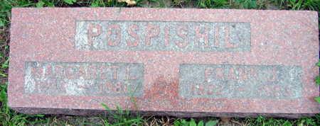 POSPISIL, FRANK J. - Linn County, Iowa | FRANK J. POSPISIL
