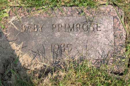 PRIMROSE, BABY - Linn County, Iowa | BABY PRIMROSE
