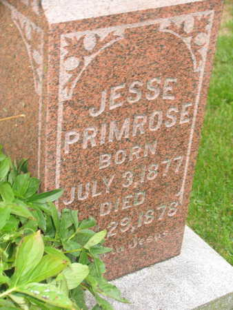 PRIMROSE, JESSE - Linn County, Iowa | JESSE PRIMROSE