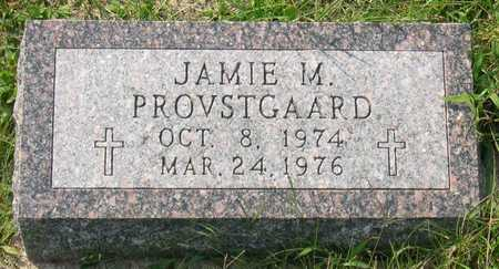 PROVSTGAARD, JAMIE M. - Linn County, Iowa | JAMIE M. PROVSTGAARD
