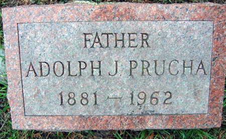 PRUCHA, ADOLPH J. - Linn County, Iowa | ADOLPH J. PRUCHA