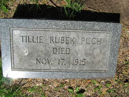 PUGH, TILLIE - Linn County, Iowa | TILLIE PUGH
