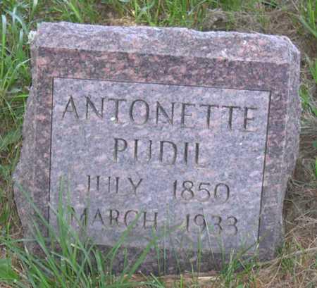 PUDIL, ANTONETTE - Linn County, Iowa | ANTONETTE PUDIL