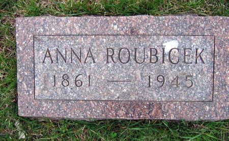 ROUBICEK, ANNA - Linn County, Iowa | ANNA ROUBICEK