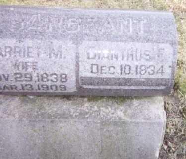 SARGEANT, DIANTHUS E. - Linn County, Iowa | DIANTHUS E. SARGEANT