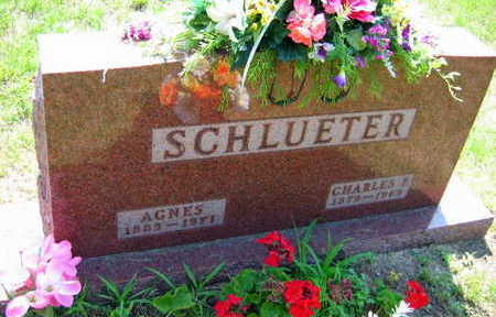 SCHLVETER, AGNES - Linn County, Iowa | AGNES SCHLVETER