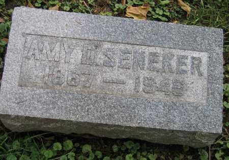 SENEKER, AMY D. - Linn County, Iowa | AMY D. SENEKER