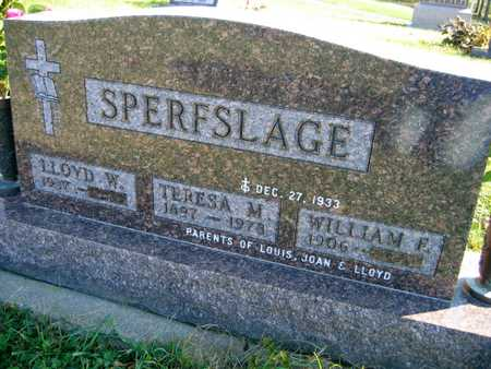 SPERFSLAGE, TERESA M. - Linn County, Iowa | TERESA M. SPERFSLAGE