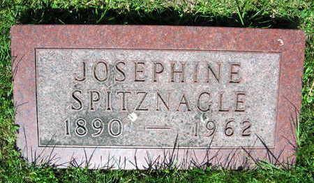 SPITZNAGLE, JOSEPHINE - Linn County, Iowa | JOSEPHINE SPITZNAGLE