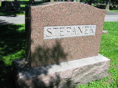 STEPANEK, FAMILY STONE - Linn County, Iowa   FAMILY STONE STEPANEK