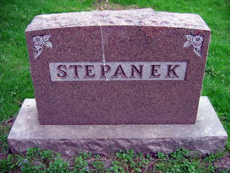 STEPANEK, FAMILY STONE - Linn County, Iowa | FAMILY STONE STEPANEK