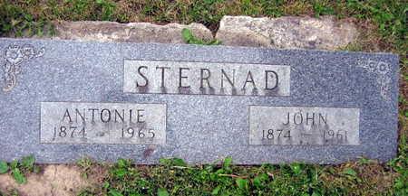 STERNAD, ANTON - Linn County, Iowa | ANTON STERNAD