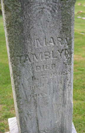 TAMBLYN, MARY - Linn County, Iowa | MARY TAMBLYN
