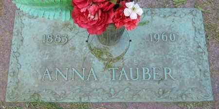 TAUBER, ANNA - Linn County, Iowa | ANNA TAUBER