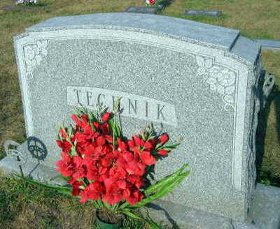 TECHNIK, FAMILY STONE - Linn County, Iowa | FAMILY STONE TECHNIK