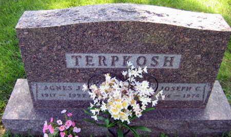 TERPKOSH, AGNES J. - Linn County, Iowa | AGNES J. TERPKOSH