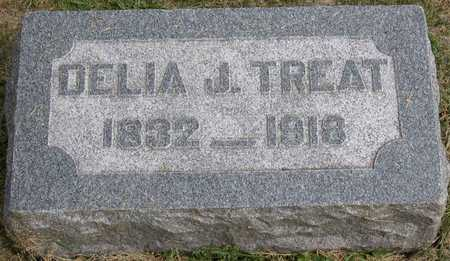 TREAT, DELIA J. - Linn County, Iowa | DELIA J. TREAT