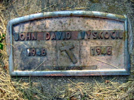 VYSKOCIL, JOHN DAVID - Linn County, Iowa | JOHN DAVID VYSKOCIL