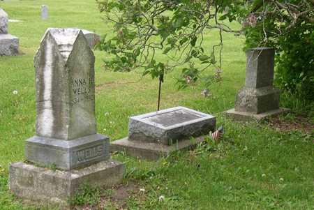 WELLS, FAMILY PLOT - Linn County, Iowa | FAMILY PLOT WELLS