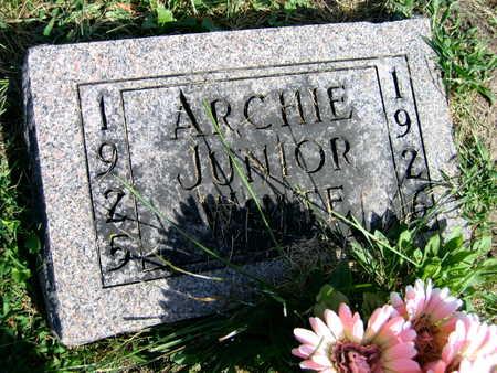 WHITE, ARCHIE JUNIOR - Linn County, Iowa | ARCHIE JUNIOR WHITE