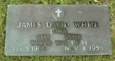 WHITE, JAMES DAVID - Linn County, Iowa | JAMES DAVID WHITE