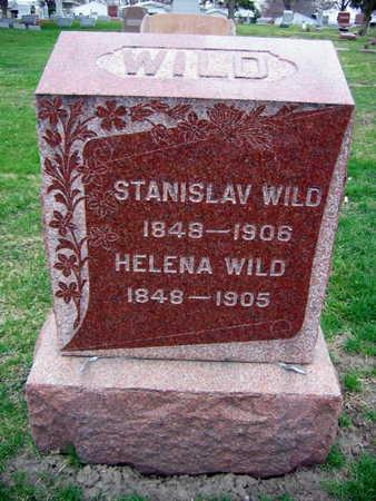 WILD, HELENA - Linn County, Iowa | HELENA WILD