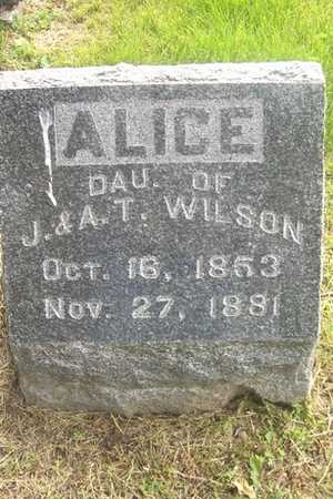 WILSON, ALICE - Linn County, Iowa | ALICE WILSON