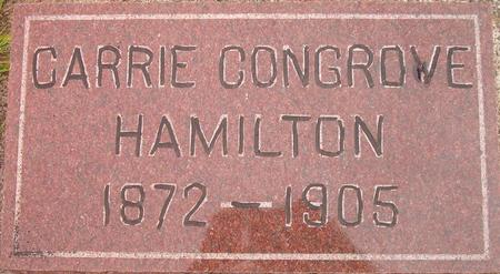 HAMILTON, CARRIE - Louisa County, Iowa | CARRIE HAMILTON