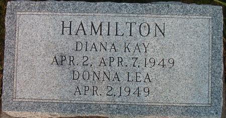 HAMILTON, DONNA LEA - Louisa County, Iowa | DONNA LEA HAMILTON