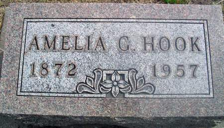 HOOK, AMELIA G. - Louisa County, Iowa | AMELIA G. HOOK