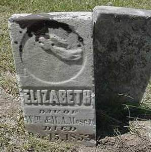MOSER, ELIZABETH - Louisa County, Iowa | ELIZABETH MOSER