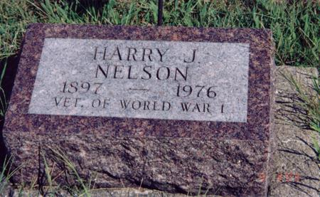 NELSON, HARRY - Louisa County, Iowa | HARRY NELSON