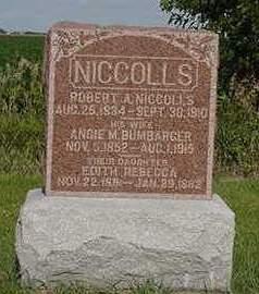 NICCOLLS, ROBERT A. - Louisa County, Iowa | ROBERT A. NICCOLLS