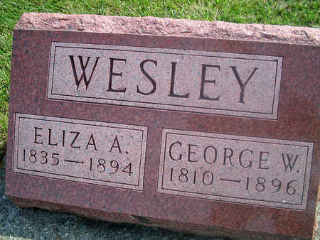 WESLEY, GEORGE W. - Louisa County, Iowa | GEORGE W. WESLEY
