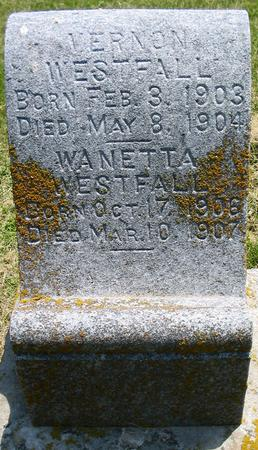 WESTFALL, WANETTA - Louisa County, Iowa | WANETTA WESTFALL