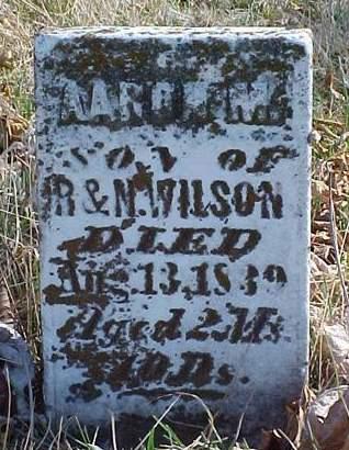 WILSON, AARON M. - Louisa County, Iowa | AARON M. WILSON