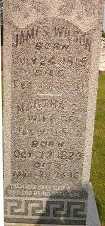 WILSON, MARTHA E. - Louisa County, Iowa | MARTHA E. WILSON